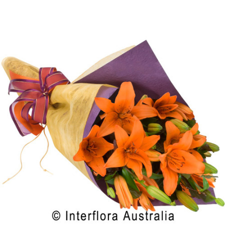 Louisa Wrapped Lily`s